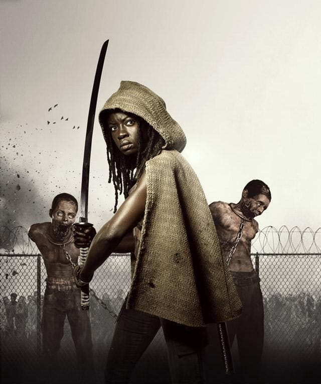 michonne the walking dead t3