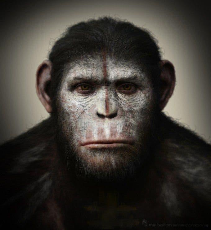 El origen del planeta de los simios Apes