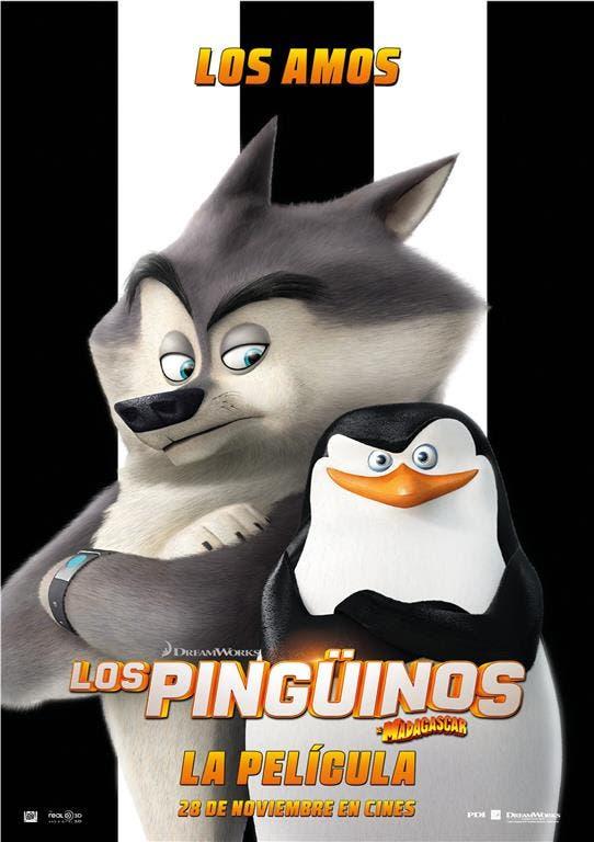 LOS AMOS (Medium)