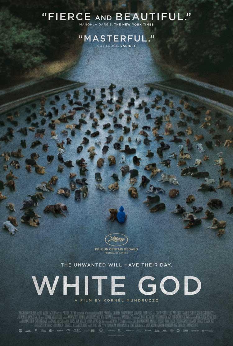 Póster de White God