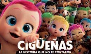 ciguenas-3-768x463