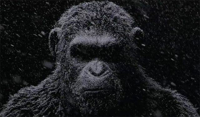 trailer internacional war for the planet of the apes. La guerra del El planeta de los simios