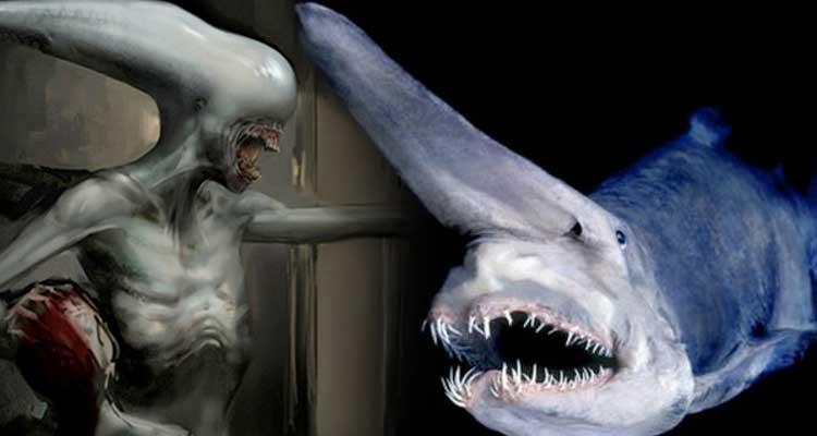 Tiburon Duende Alien: Covenant