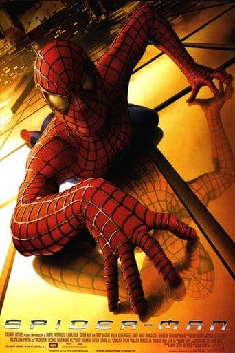 "Poster for the movie ""Spider-Man"""