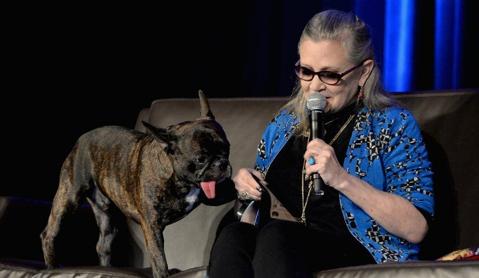 Impresiones de un traidor: Carrie Fisher