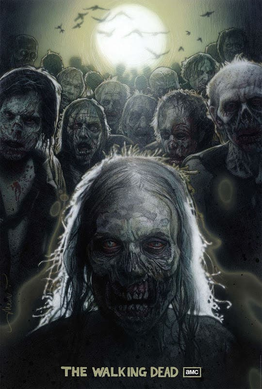 the walking dead drew struzan