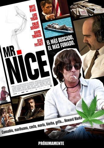 "Poster for the movie ""Mr. Nice"""