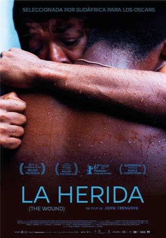 "Poster for the movie ""La herida (The Wound)"""