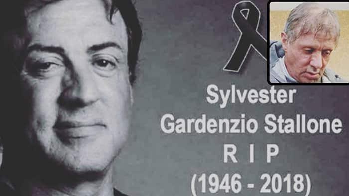 La muerte de Sylvester Stallone