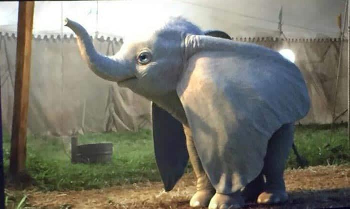 Primera imagen oficial de Dumbo (2019)