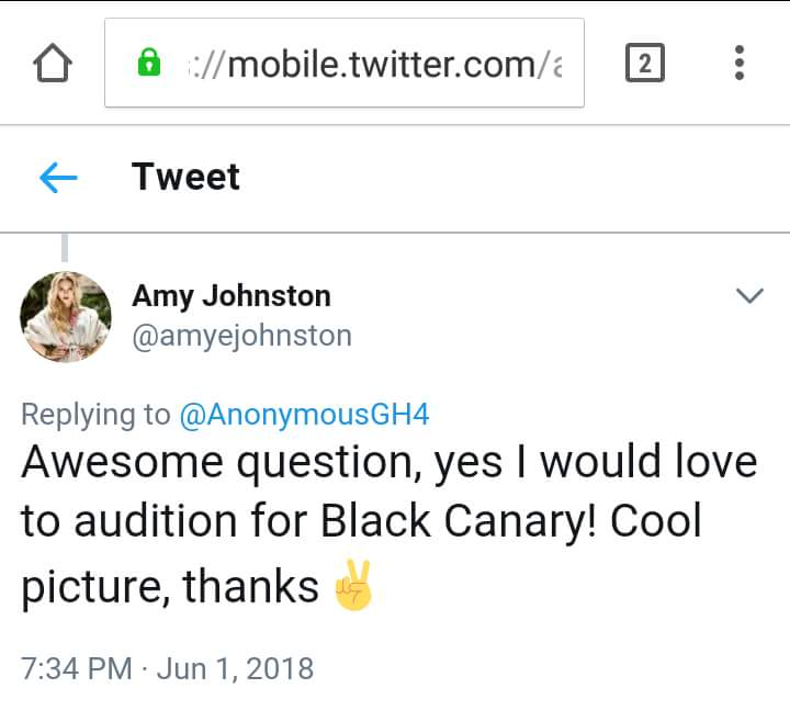 Amy Johnston quiere ser Black Canary (Canario Negro) en Aves de Presa (Birds of Prey)
