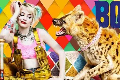 Explicación de por qué Harley Quinn tiene una hiena en Aves de Presa