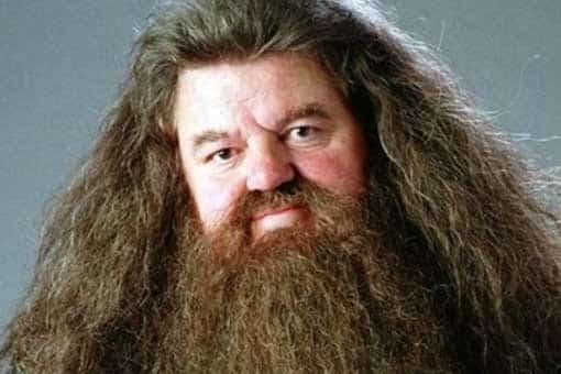 Animales Fantásticos 3: Eddie Redmayne quiere que aparezca Hagrid