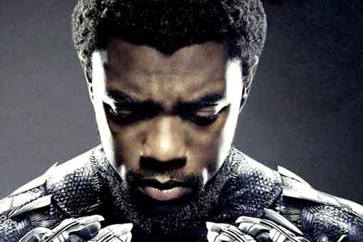 Las desafortunadas palabras de Terry Gilliam a Black Panther de Marvel