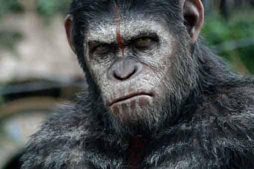 El planeta de los simios: La nueva película podría ser otro reboot