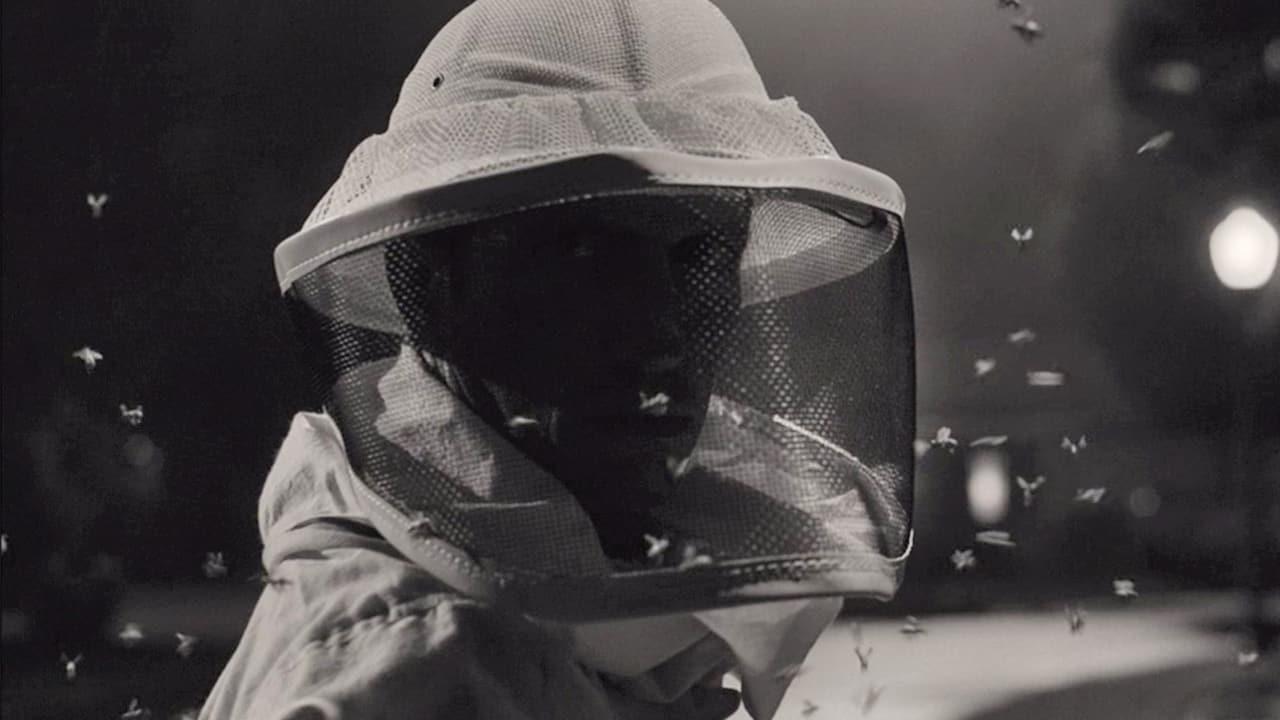 apicultor SWORD