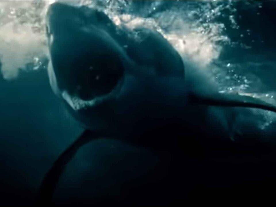 Terrifying trailer for Great White (2021) Fear the great white shark!